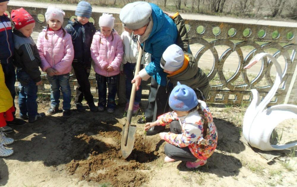 Фото Детский сад солнышко 12